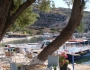 terasa-improvizata-printre-niste-copaci-portul-sfantul-nicolae