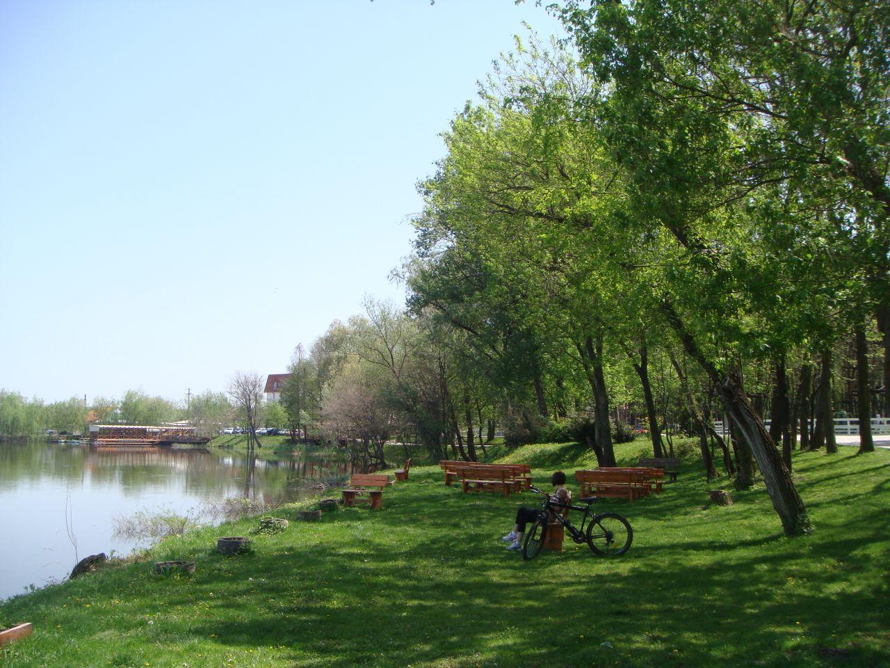 Parcul de aventura Comana sau viata de la marginea Bucurestiului