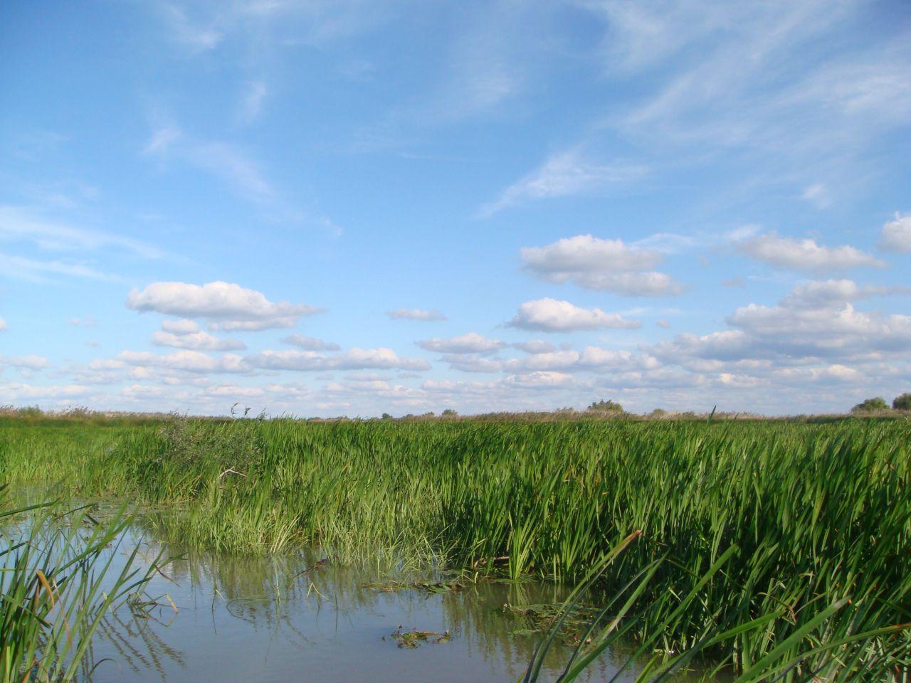 Delta Dunarii, varianta de lux
