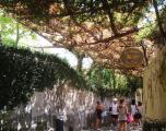 Strada din Positano, Coasta Amalfi