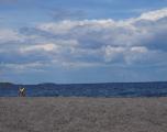 Copenhaga - Plaja Amager