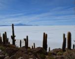 Inkawasi Island, Bolivia