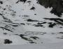 muntii-parang-lacul-gheresu