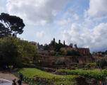 Il Palatino - Roma