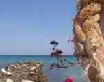 Thassos - Skala Potamia
