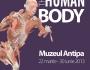 human-body-0