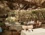 taverna-acoperisul-era-facut-cregile-copacilor-iar-pestele-proas
