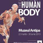 https://www.logout.ro/wp-content/uploads/2013/03/human-body-0-150x150.jpg