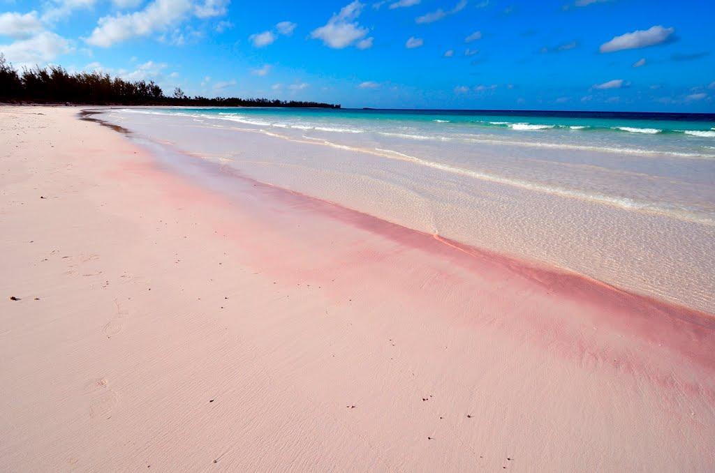 Bahamas - Pink beach