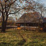 Casa cu Dor Breb (3)