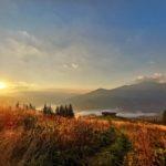 https://www.logout.ro/wp-content/uploads/2020/08/Comisu-Wildlife-Hides-Travel-Carpathia-29-150x150.jpg